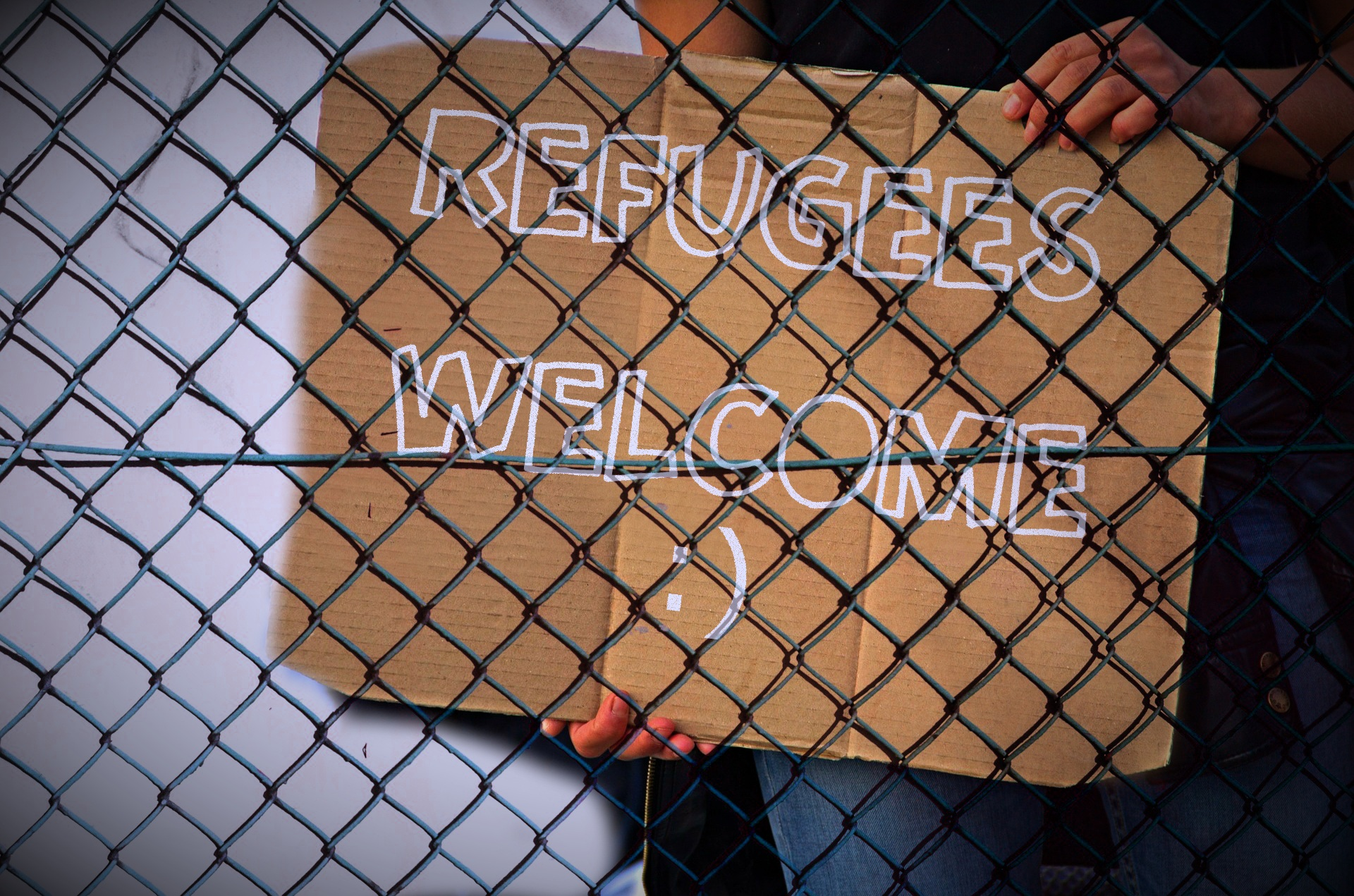 Refugees for web