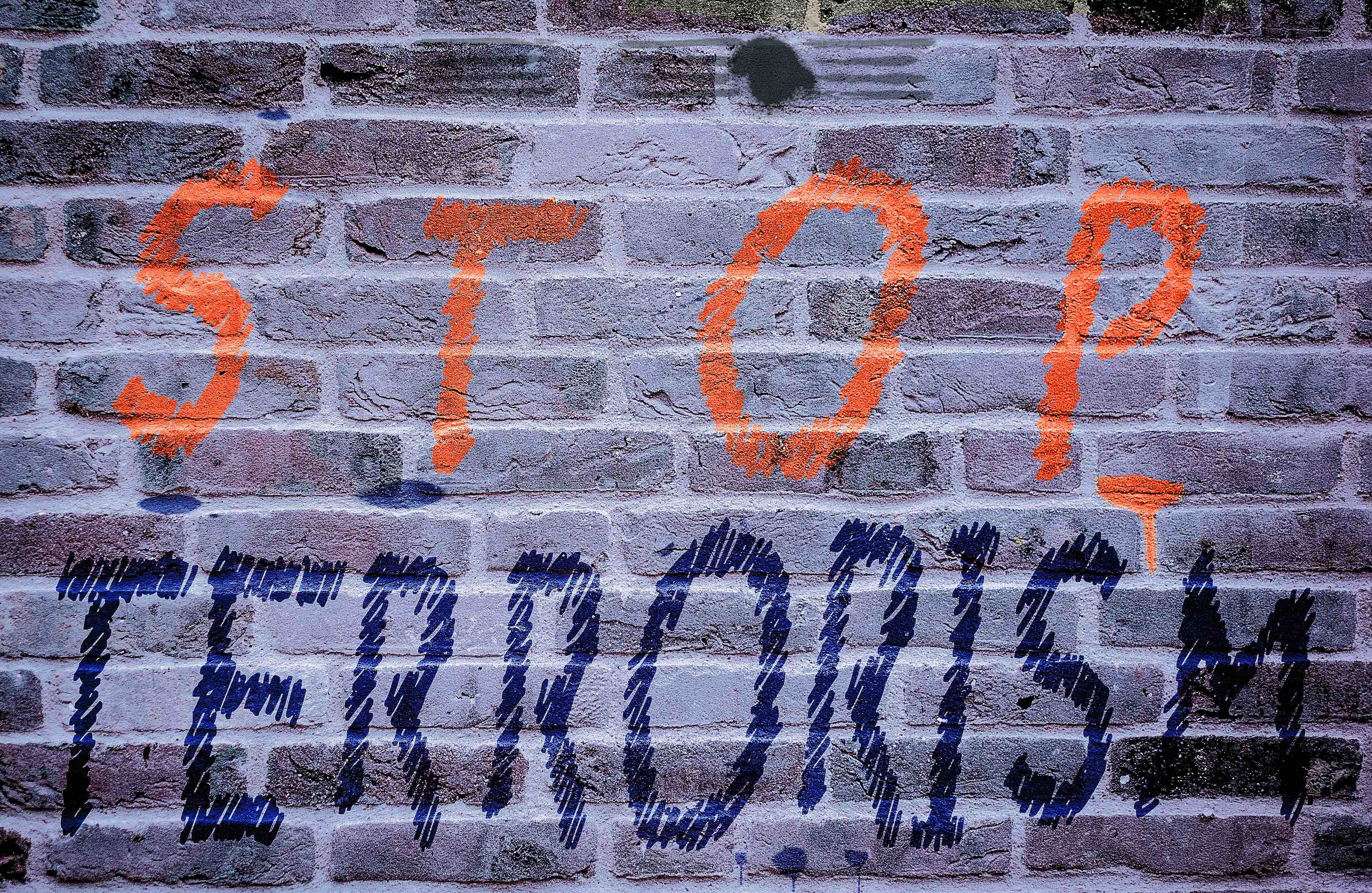 STOP TERRORISM on the wall new for web